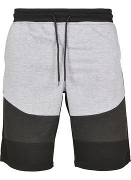 Southpole Color Block Tech Fleece Shorts